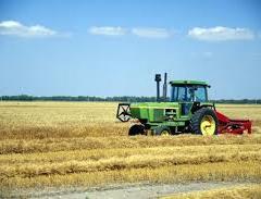 Imu terreni agricoli detrazioni: i chiarimenti del ministero