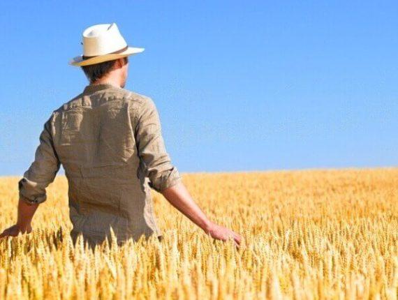 bonus agricoltori